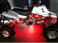 Tanner's Serval, lit up with LEDs in the Harley Bike Show!!!